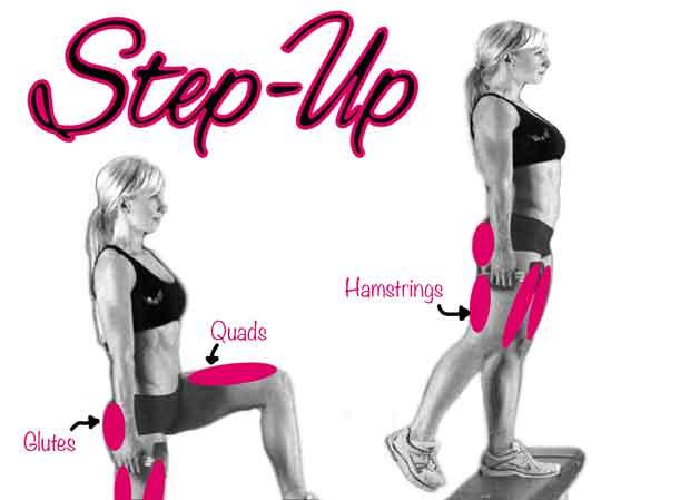 Muscoli coinvolti step up