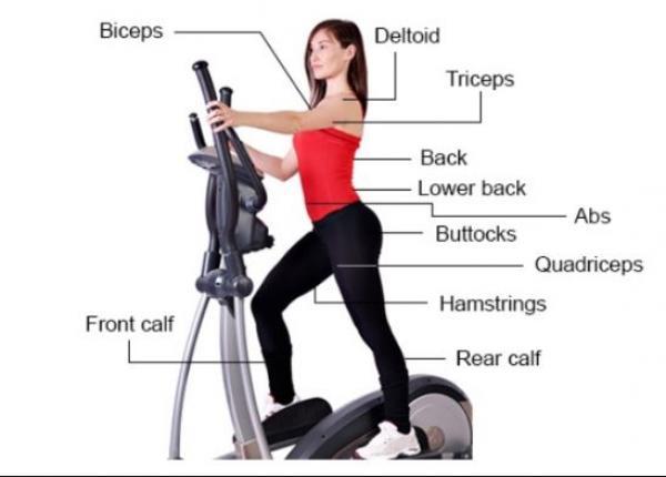 allenamento con l'ellittica